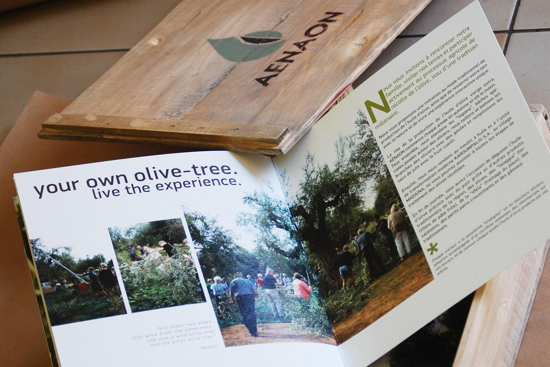 Aenaon Extra Virgin Olive Oil