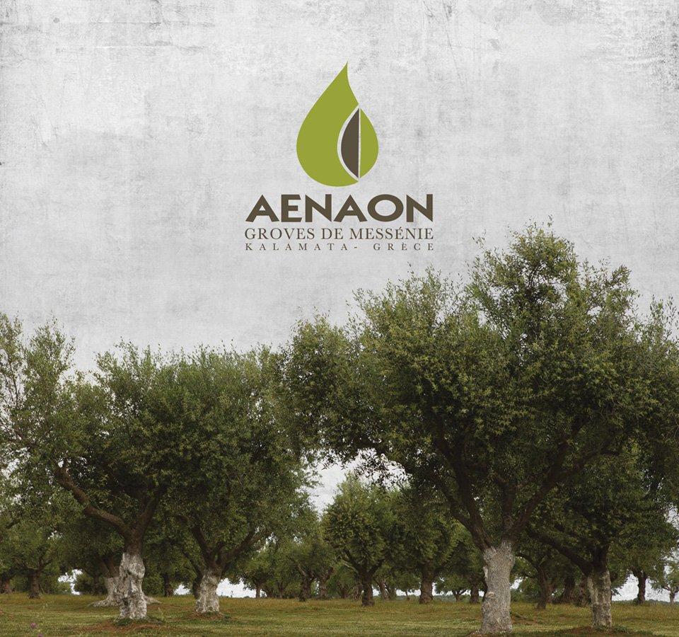 Aenaon-Profile-Book