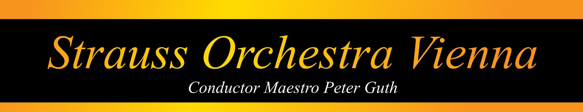 Strauss Vienna Orchestra