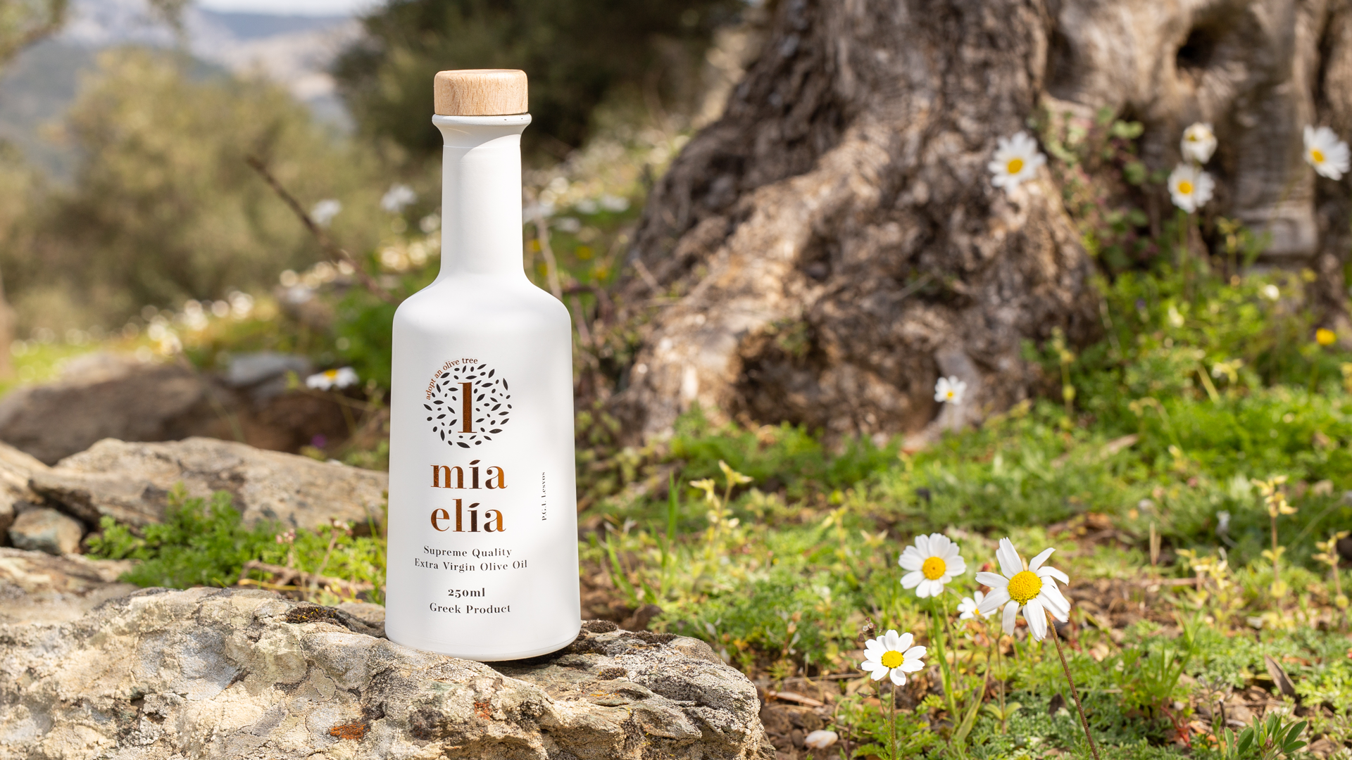 Bottle of oil in an olive grove